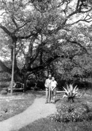 Vater und Sohn im Garten